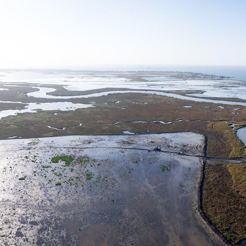 Coastal Restoration. Louisiana. Bayou Bonfouca