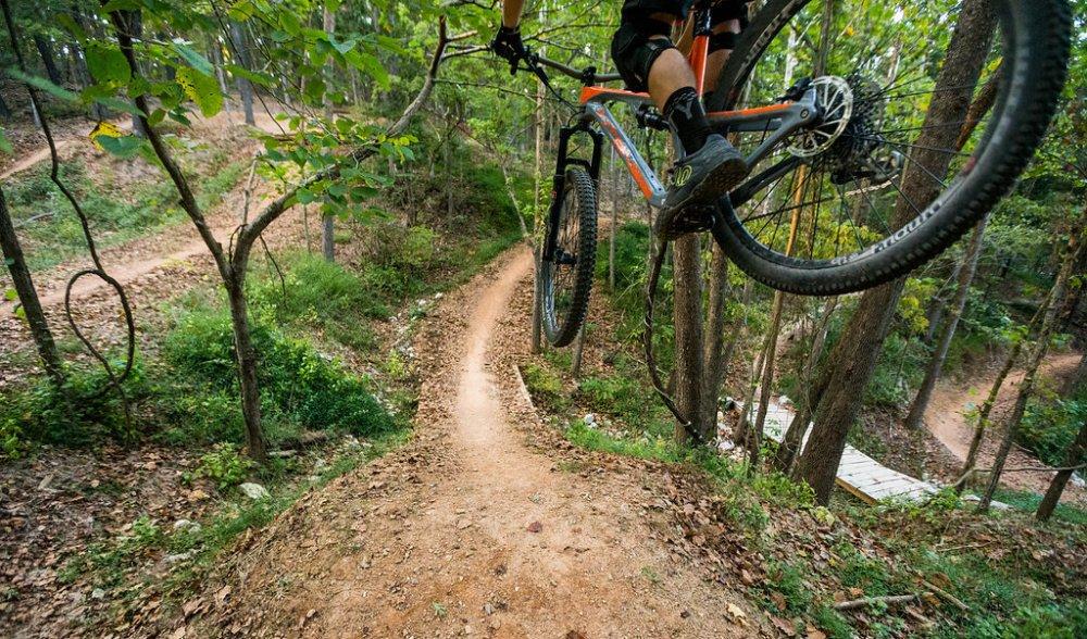 Coler Mountain Bike Preserve Header Option 1.jpg