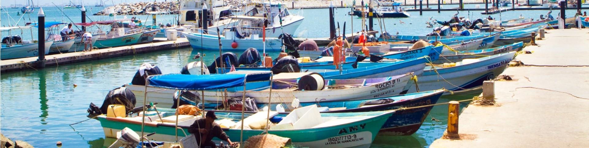 mexico-fisheries-hero.jpg