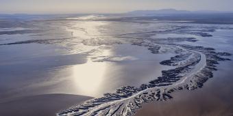 LightHawk Conservation delta