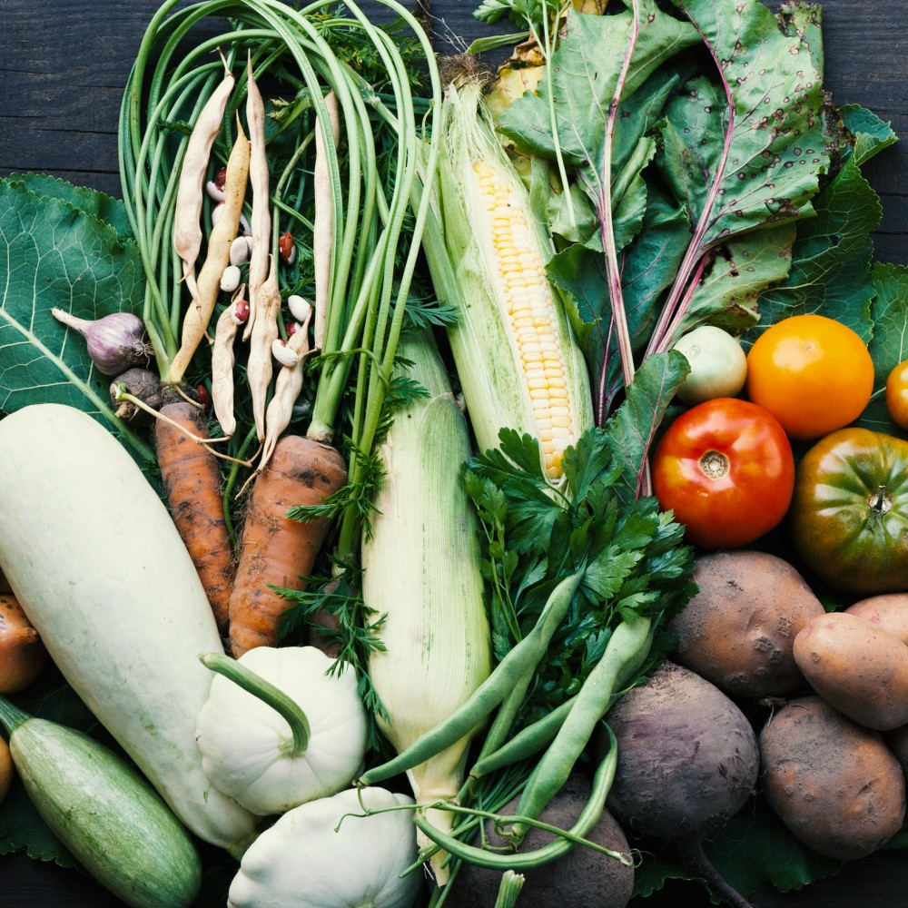 Vegetables background sustainable farming agriculture NWA food systems