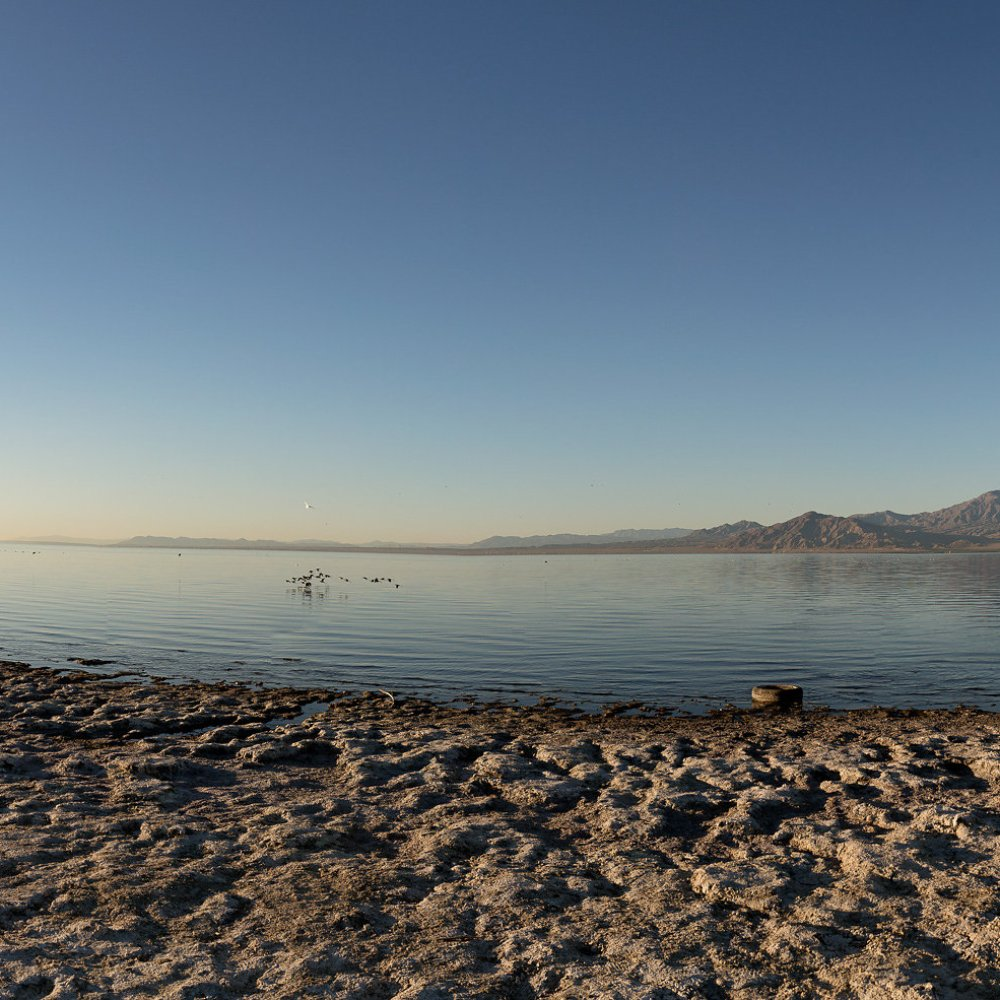 COPY. Salton Sea. Skip Armstrong photo 2.jpg
