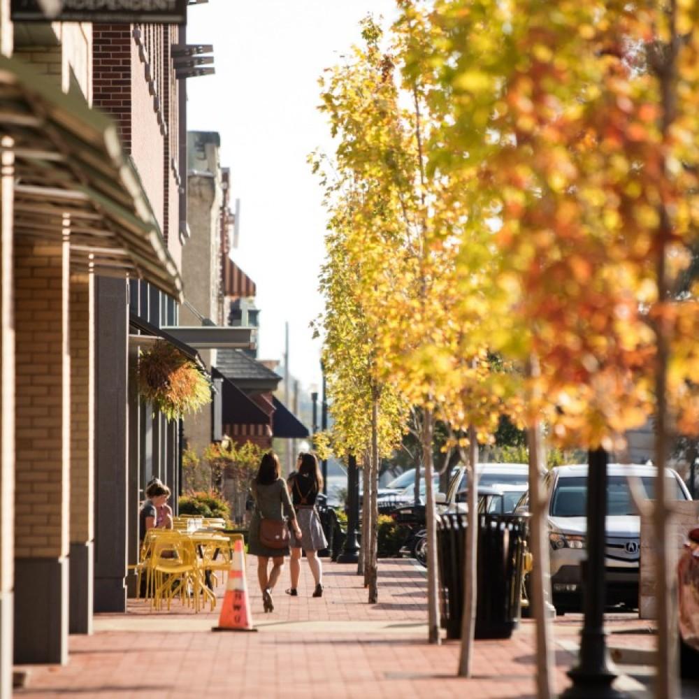 bentonville-trees-downtown-web.jpg