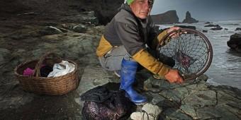 Peru Crab fishery
