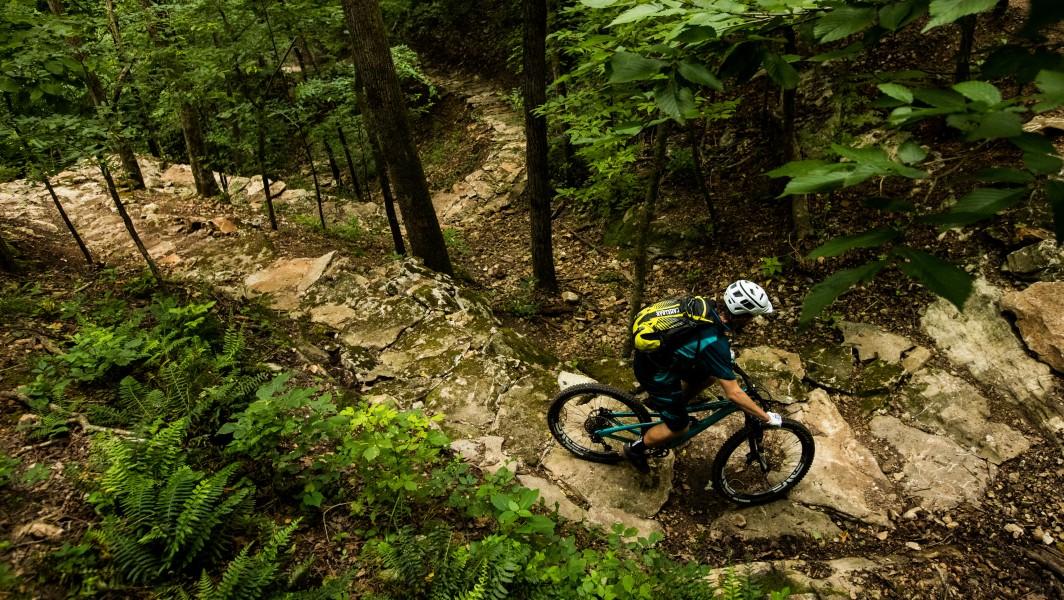 Coler mountain bike preserve header option 4.jpg