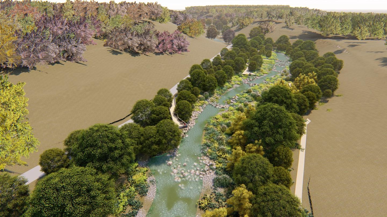 coler wetlands 1.jpg